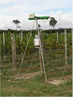 Gas Gun in a Vineyard